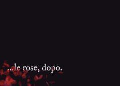 ….le rose, dopo!